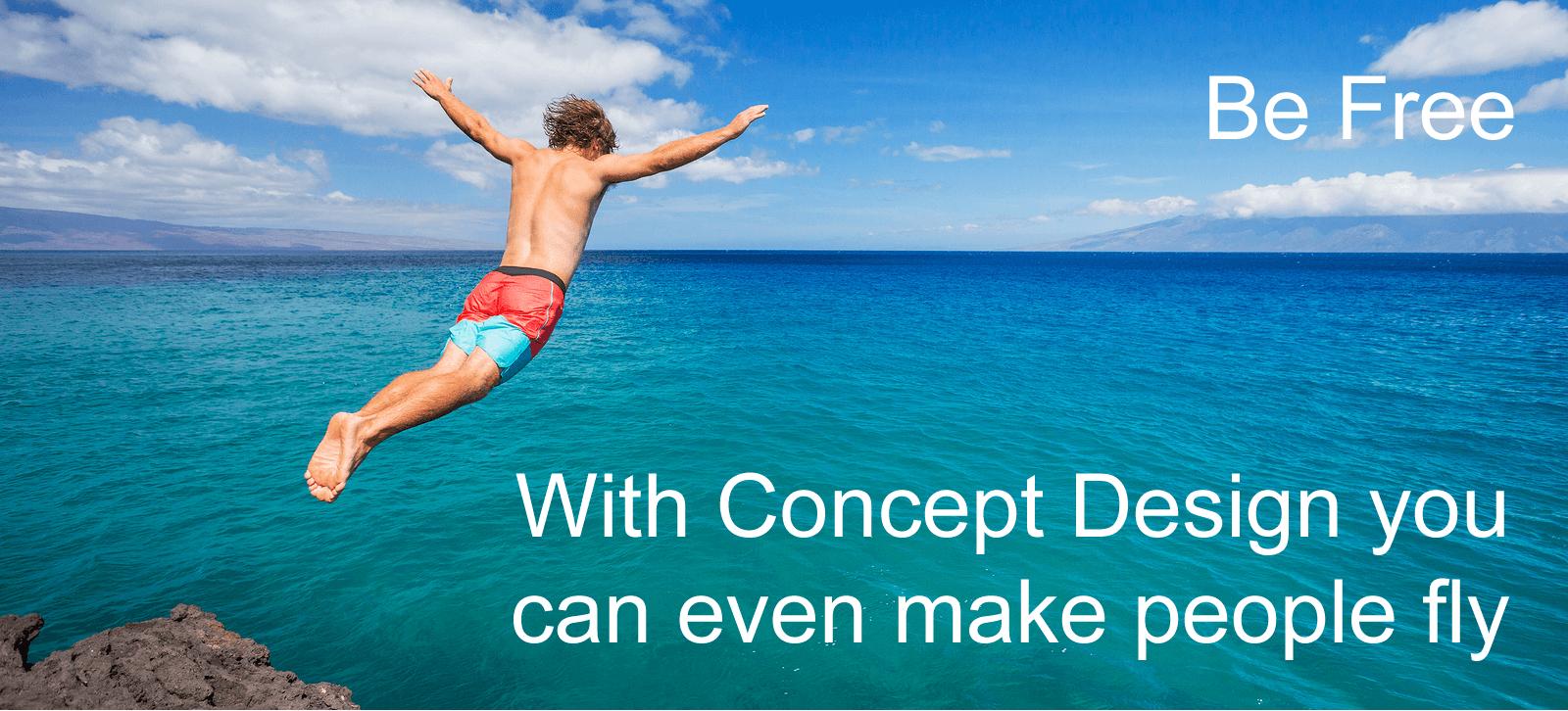 Concept Design Solution