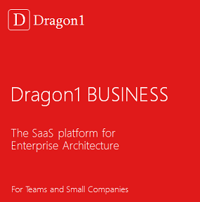 Dragon1 BUSINESS License