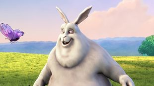 Big Buck Bunny- A Video Upload Example (MP4 / HTML5)